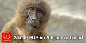 25.000 Euro höhere Kosten durch falschen Orderabgleich im Affiliate