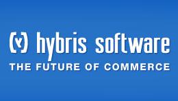 Hybris E-Shop SEO
